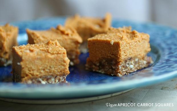 vegan apricot carrot squares on mince and type