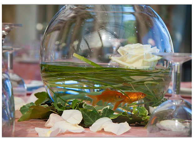 Fishbowl and Beargrass Centerpiece