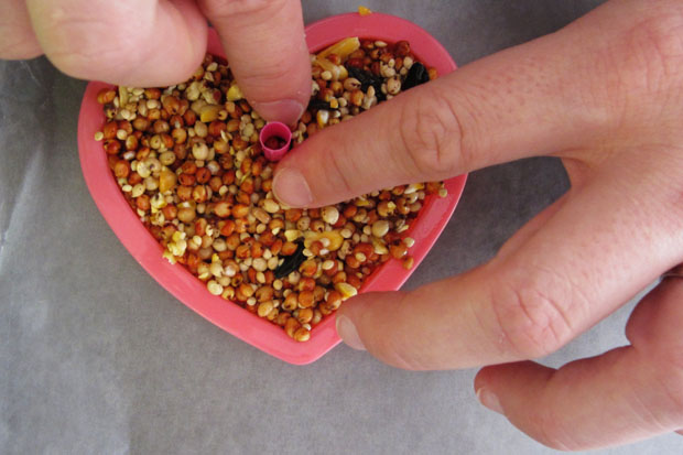 how to: heart-shaped birdseed wedding favors