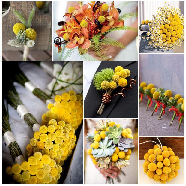 Yellow Billy Balls Wedding Flower Ideas