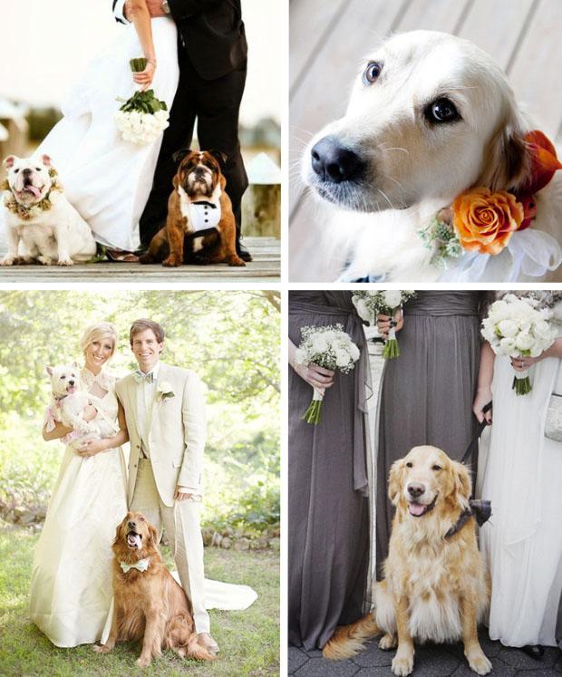 Four Legged Flower Dogs