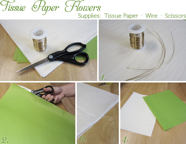 tissue pom supplies