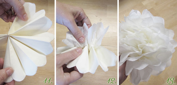 unfolding tissue paper flowers