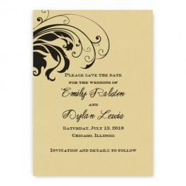 Quinn Save the Date Cards