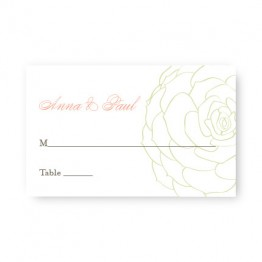 Succulent Seating Cards