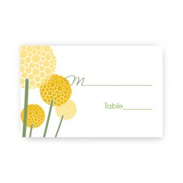 Allium Seating Card