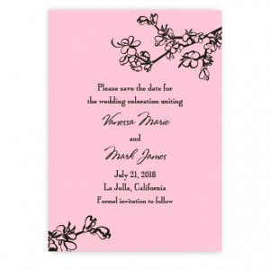 Vanessa Save the Date Cards
