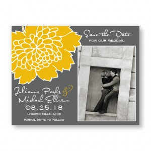 Bliss Photo Save the Date Cards