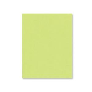 Apple Green Cardstock - Various Sizes