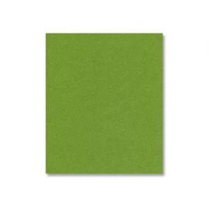 Fairway Shimmer Cardstock - Various Sizes