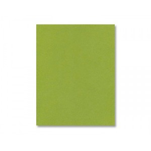 Jellybean Green Cardstock - Various Sizes