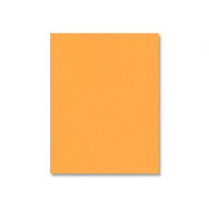 Orange Fizz Cardstock - Various Sizes