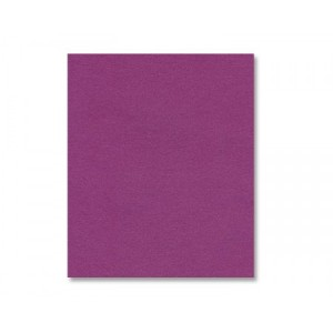 Punch Shimmer Cardstock - Various Sizes