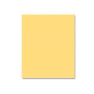Squash Shimmer Cardstock - Various Sizes