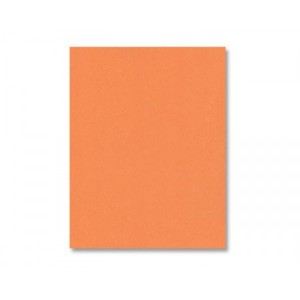 Tangy Orange Cardstock - Various Sizes